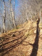 Lungo il sentiero in direzione del Castello (Torre) di Rusino